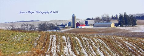 Country winter field