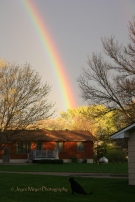 Dog Max watches spring rainbow at my home at 113 Dvorak Drivesc