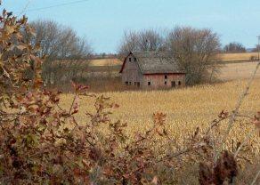 Fall barn field sf
