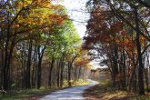 Yellow River Forest by Waukon IA sf