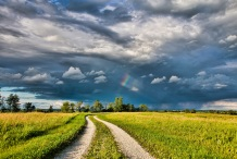 first-rainbow-farm-driveway-on-ossian-blacktop-at-7-pm-sunday-july-27-going-to-a-family-photo-shoot-only-a-sprinkles-of-rain-and-on-way-back-home-a-second-rainbow-appeared-at-sunset-as-a-fawn-across