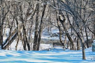 IMG_6140-1Wonder Creek Spillvillejm1