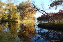 Along the Wisconsin River at Nekoosa Wisjm