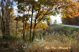 county road by EldoradoIMG_4646esc