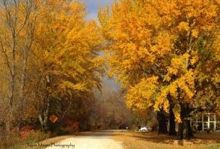 The Prairie Farmer Recreation Trail in Calmar JM