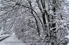 winter-fav2016-12-04-23-00-1-28jm
