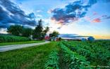 a county Iowa farm life winneshiek coIMG_1993e-1