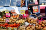 farmers market_MG_0046-1