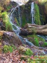 Malanaphy Springs Decorah, IA