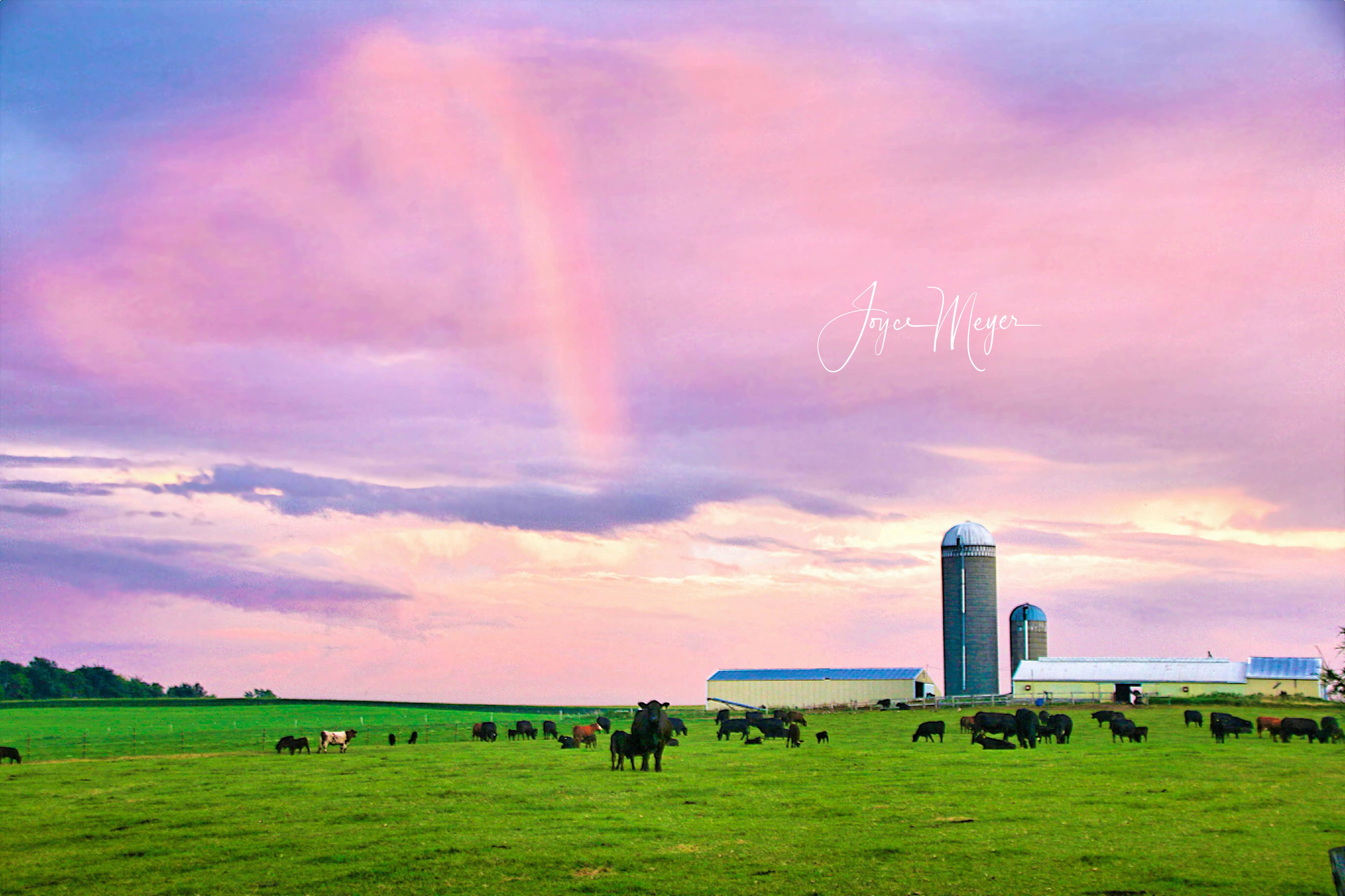 over-the-rainbow-1